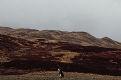destinnation-wedding-scotland-photographer-blossomco-525